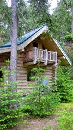 Alta Crystal Resort at Mount Rainier: Honeymoon Cabin