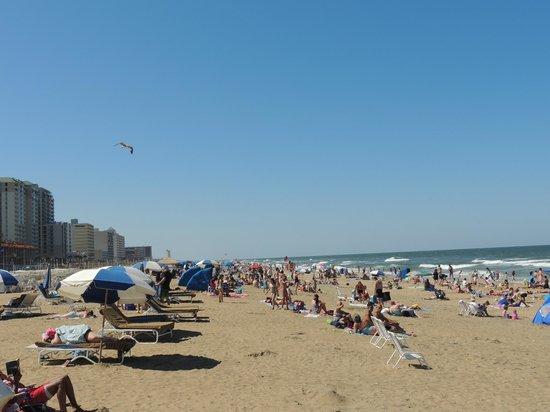 Best Western Plus Virginia Beach: Beautiful beaches