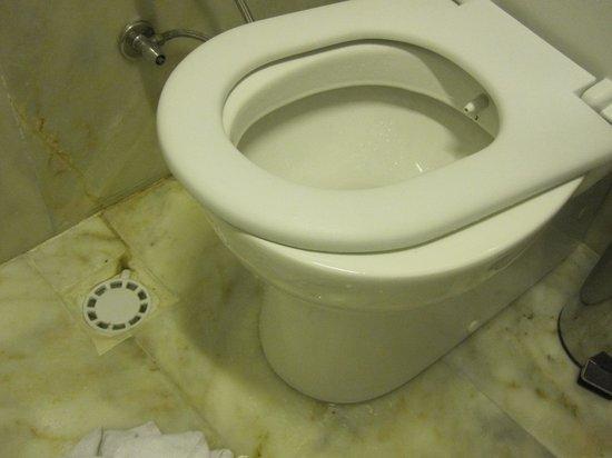 Apricot Hotel: la tabla del inodoro rota