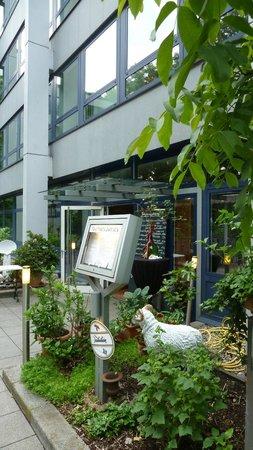 Trattoria Baccala: Baccala Duesseldorf