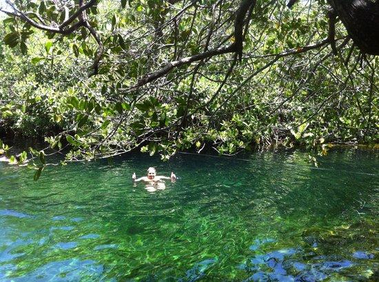 Tierras Mayas: Cenote