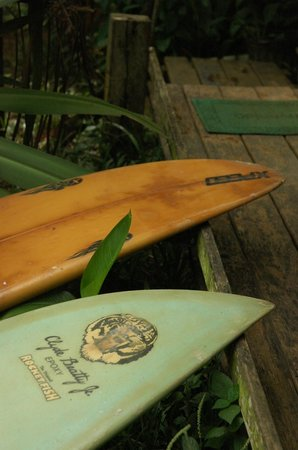 Up in the Hill - Coffee Shop & Organic Farm : Surfboards for hire!
