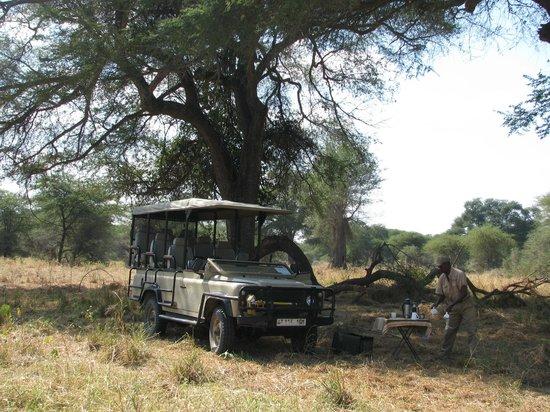 Jongomero: Safari Vehicle
