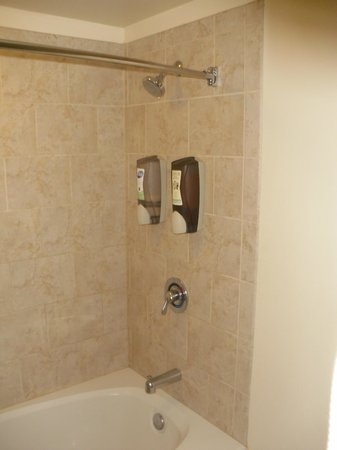 Chicago South Loop Hotel: Soap and shampoo dispensor in shower/tub,