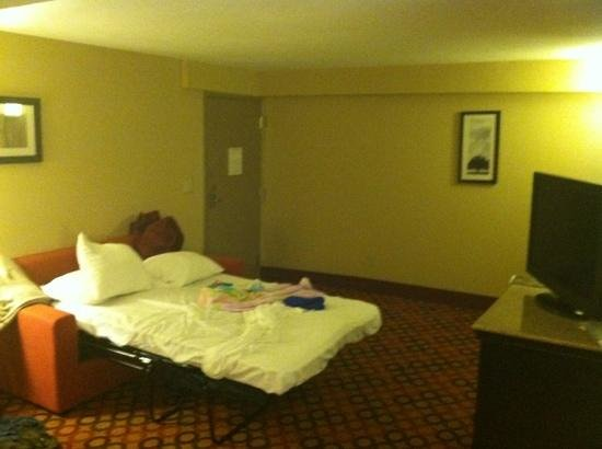 Comfort Inn and Suites Statesville: felt like a dark dorm room with no windows in the living room