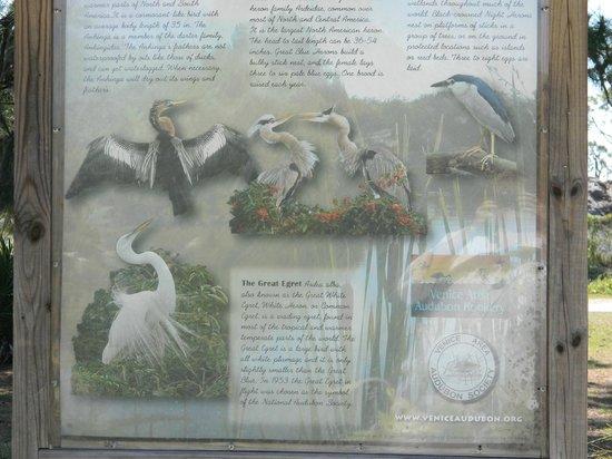 Venice Area Audubon Society : Rookery information board