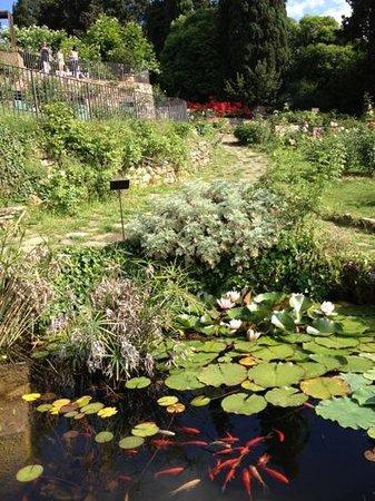 Folon e il Giardino delle Rose Photo