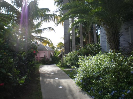 Cocobay Resort: pathway between the cotteges/ the grounds