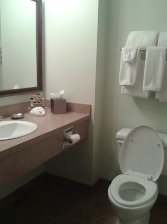 Service Plus Inns & Suites Calgary: Bathroom was pretty standard