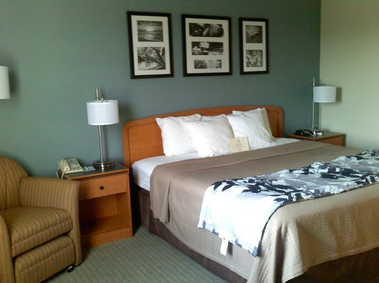 Sleep Inn & Suites : Handsome decor