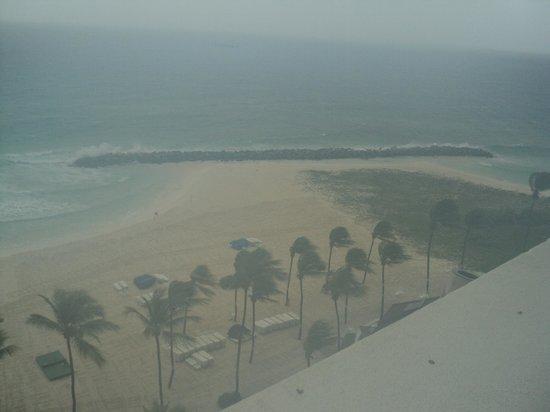 View from room Ocean & Beach