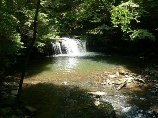 Grundy Forest Natural Area : Largest falls on the two mile loop