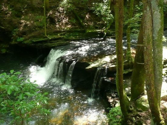 Grundy Forest Natural Area : Pretty, but smaller falls