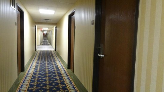 Comfort Inn North Polaris: Hall way