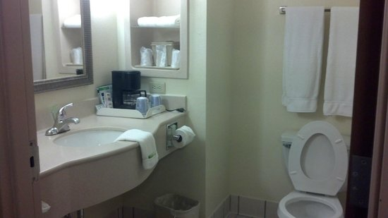 Holiday Inn Express Hotel & Suites : Bathroom