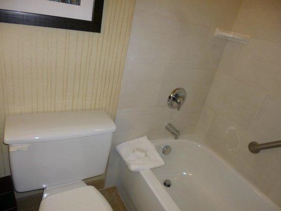 DoubleTree by Hilton Breckenridge: Shower/tub