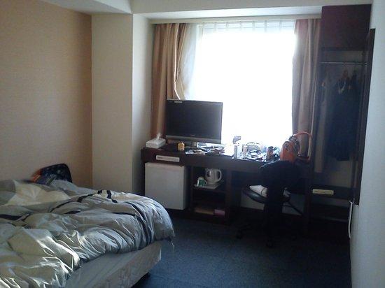 Park Side Hotel: TV& wardrobe