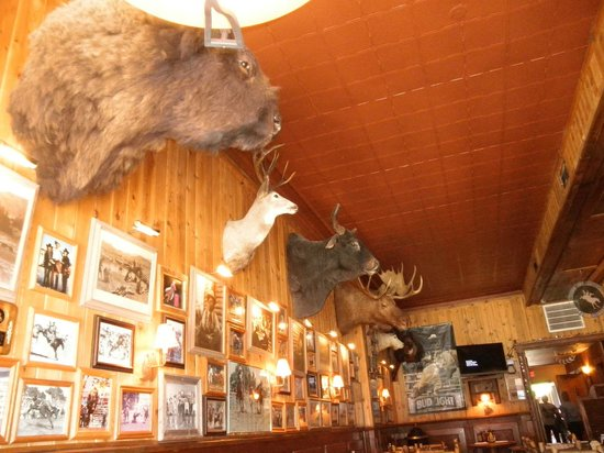 Proud Cut Saloon Wild Life