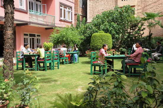 Acme Guest House: garden