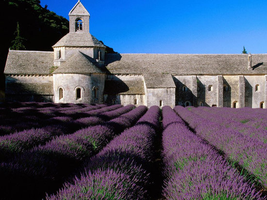 One Day in Provence - Day Tours: Senanque Abbey