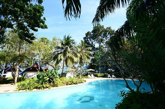 Coral Island Resort: Pool