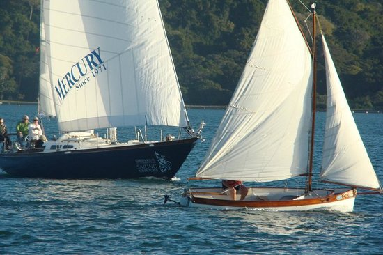 Southern Yachting Academy: Keelboat sailing on vacation in Knysna