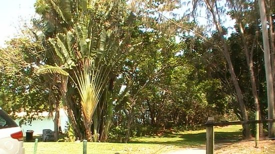 Forrest Beach Hotel & Caravan Park: Just outside the room