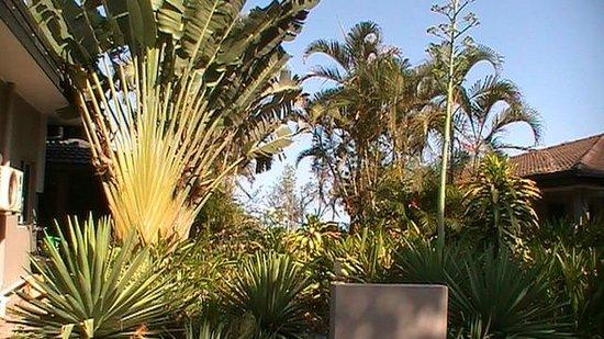 Forrest Beach Hotel & Caravan Park: Just near our room