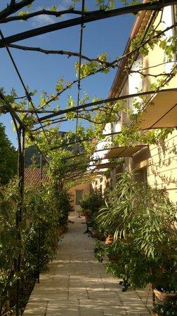 Les Restanques de Moustiers : la terrasse ombragée des chambres