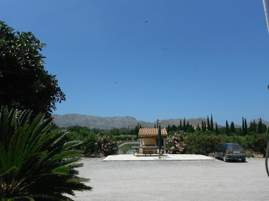 "Bodegas Can Vidalet: The view from the ""Tasting Terrace""!"