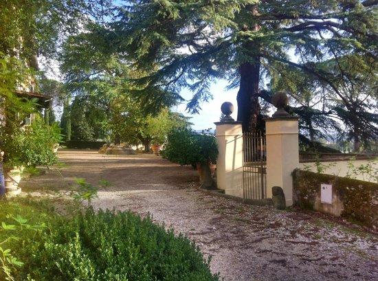 Residenza Strozzi: Grounds