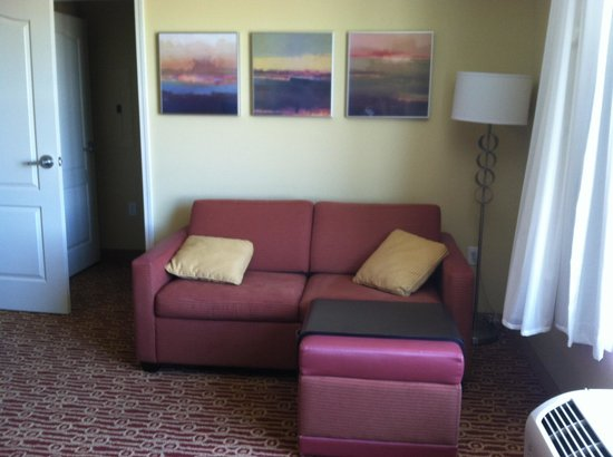 TownePlace Suites Sacramento Roseville : Pull out couch. Not bad.