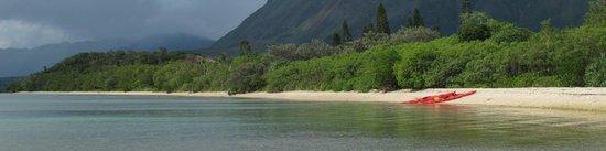Le Mont-Dore, Nova Caledônia: La Côte Oubliée- départ de Yaté en Kayak - H2o Odyssée