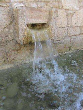 Ayii Anargyri Natural Healing Spa: Ayii Anargyri hotel & Spa, Miliou, Paphos