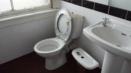 Brighton Arms Hotel : broken toilet cistern
