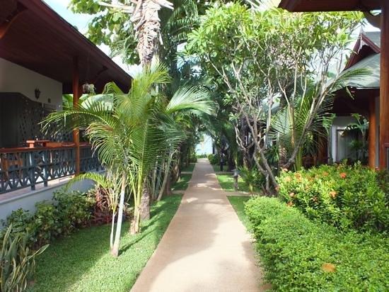 Banana Fan Sea Resort: Een onderschrift toevoegen
