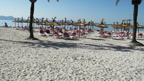 Hotel Aluasoul Alcudia Bay: stunning beach