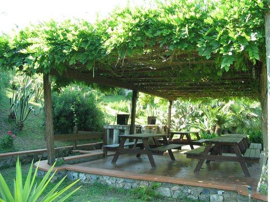 Resort Capo Bianco: zona grill