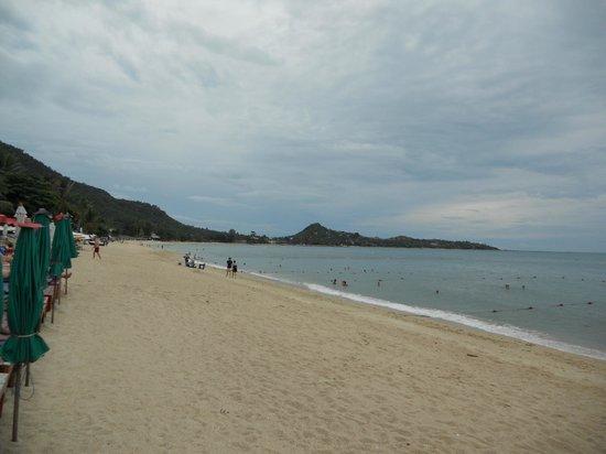 Summer Inn: Strand Lamai Beach 200mtr. van hotel