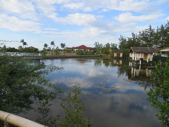 Golden Sunset Village Resort & Spa: Fish pond full of trash
