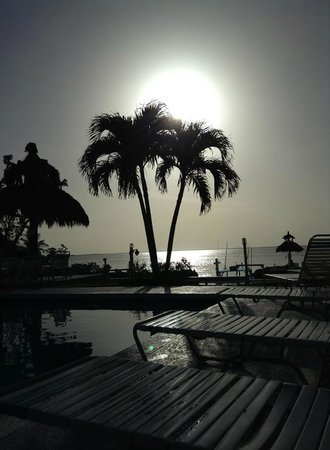 Amy Slate's Amoray Dive Resort: view from pool
