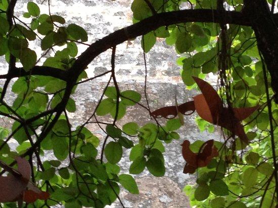Cafe La Princesa: Dining under the tree.