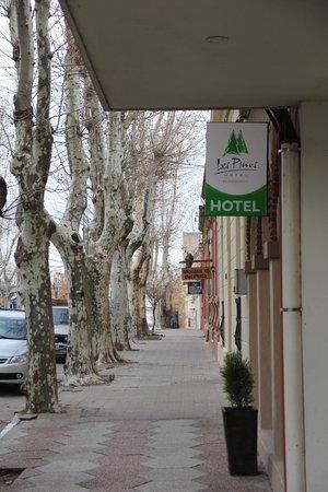 Hotel Los Pinos: Entry