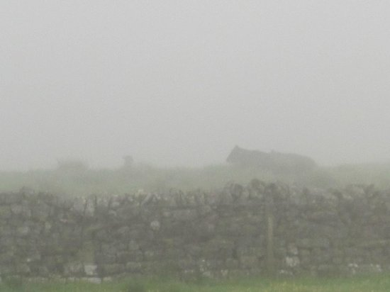 Carraw Bed & Breakfast: Misty view in the morning.