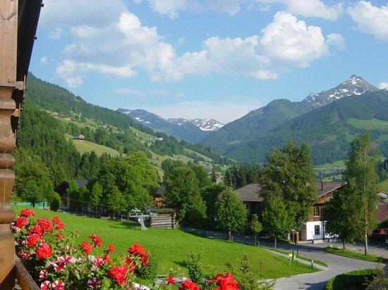 Hotel Böglerhof : View from room