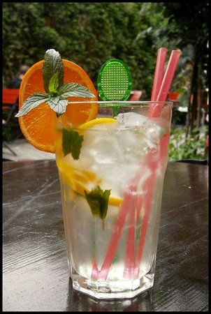 Klub Cestovatelu : Elderberry limonade with mint