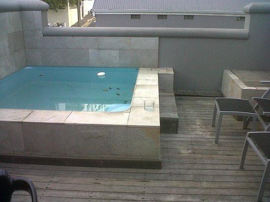 Sugar Hotel & Spa: Private patio and pool
