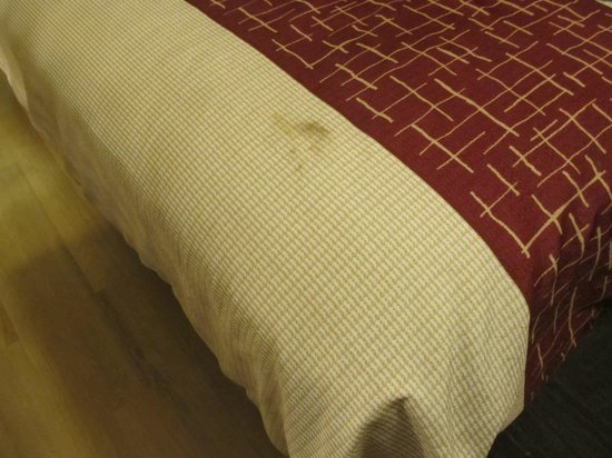 Red Roof Inn Allentown Airport: Room 219 - Burn on bed spread
