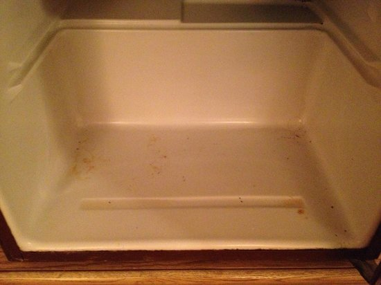 Catskill Mountain Lodge: Filthy refrigerator