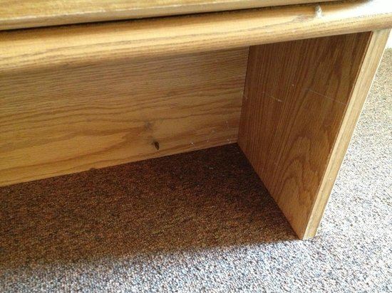 Catskill Mountain Lodge: cobwebs and bugs under tv stand